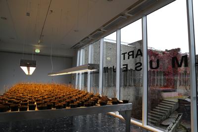 Lillehammer_Kunstmuseum (9)