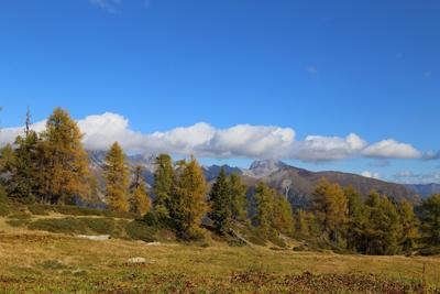 Herbst-Wanderung im Lesachtal, Niedergaileralm, Foto Anita Arneitz