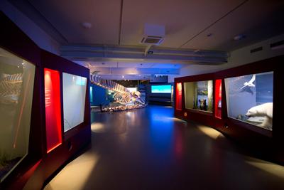 Tromsö Museum, Tromsø, www.anitaaufreisen.at