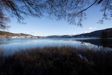 Winter am See, Keutschacher See, Foto Matthias Eichinger