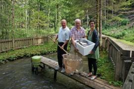 Fischspezialitäten aus Kärnten im Biohotel Daberer