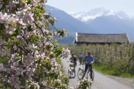 Hotel Therme Meran Südtirol