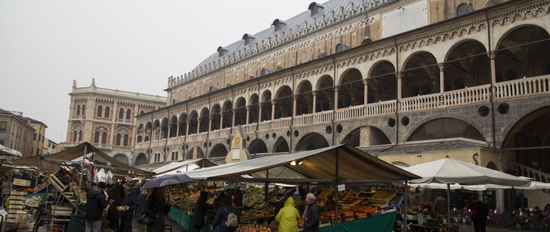 Padua_Markt (1)