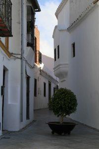 Kirche Santa María la Coronada (5)