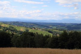 Picknick im Sulmtal-Sausal, Bioweingut Warga-Hack, Sulmtal-Sausal, Steiermark, www.anitaaufreisen.at
