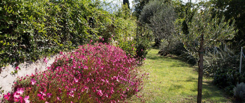 Privatgarten Cecilia Residori Casa Biasi, Gardasee, Gartenreisen, www.anitaaufreisen.at