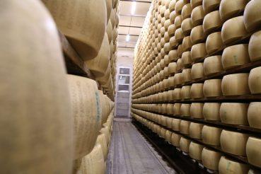 Käse, Emilia-Romagna, Italien, Foto Anita Arneitz, www.anitaaufreisen.at