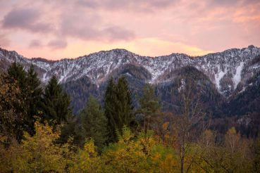 Klimafitter Wald, Villach, Foto Anita Arneitz