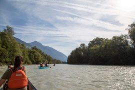 Draupaddelweg, Paddeln auf der Drau, Kärnten, SUP, Kanu, Kajak, Foto Anita Arneitz, Reiseblog www.anitaaufreisen.at