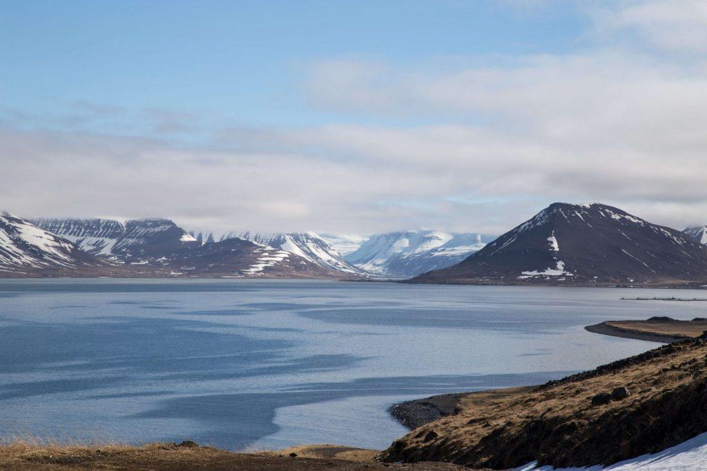 Urlaubstipps Island, Westfjorde, Foto Anita Arneitz
