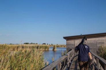 Birdwatching Nationalpark Neusiedler See, Seewinkel, Burgenland, Foto Anita Arneitz, Reiseblog anitaaufreisen.at
