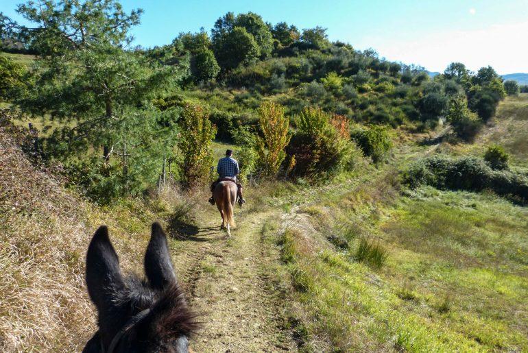Reiturlaub in der Toskana, Wanderritt Italien, Fotos Karin Schafler, Tipps auf Reiseblog www.anitaaufreisen.at