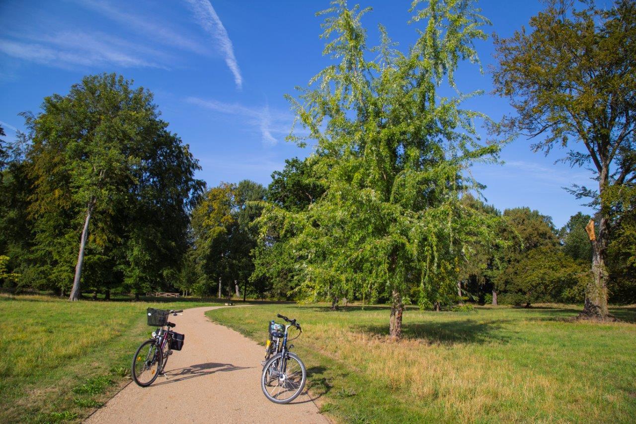 Radtour entlang der Märkischen Schlössertour, Seenland Oder-Spree, Brandenburg, Deutschland, Foto Anita Arneitz