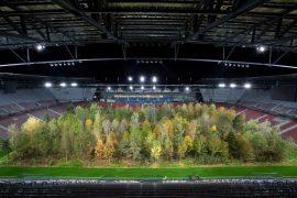 For Forest im Wörthersee Stadion in Klagenfurt, Foto Matthias Eichinger, Tipps fürs Waldbaden in Kärnten