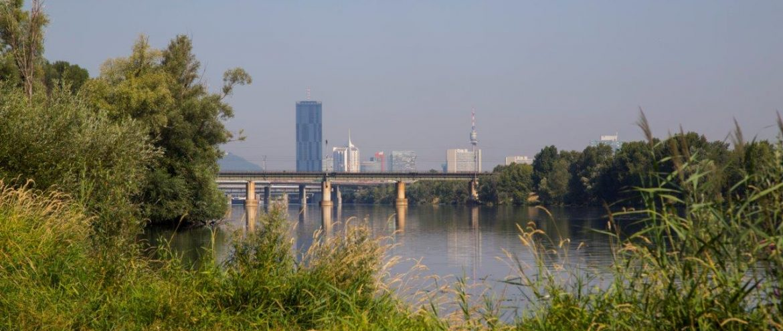 Endlich wiederFamilienzeit aufder Donauinsel