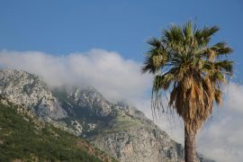 Montenegro Urlaub, Reisetipps, Kotor, Foto Anita Arneitz