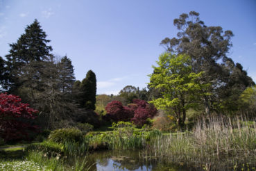 Mount Usher Gardens in Irland