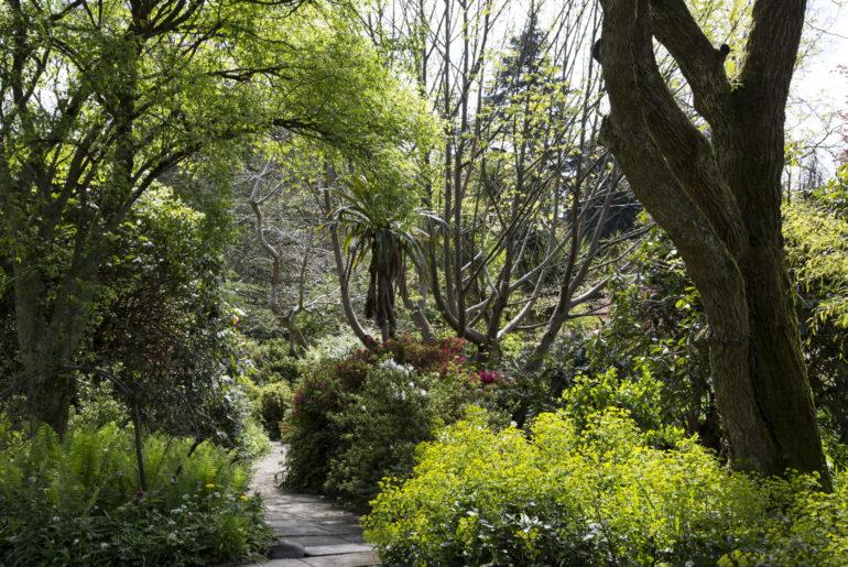 Garten Irland