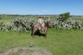 Reiturlaub in Mexiko