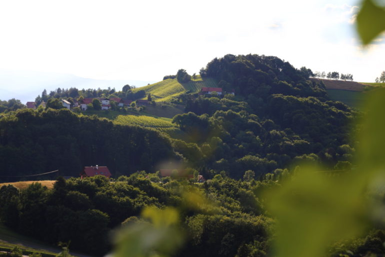 Ausflugstipps Südsteiermark