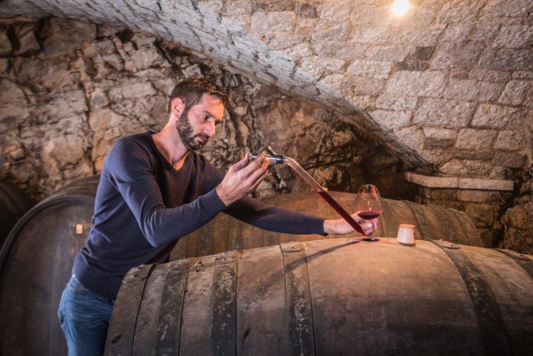 Wein aus dem Karst